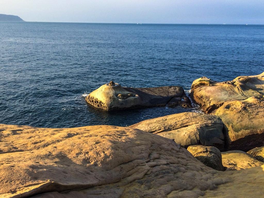 海中に生物が潜んでいるように見える岩