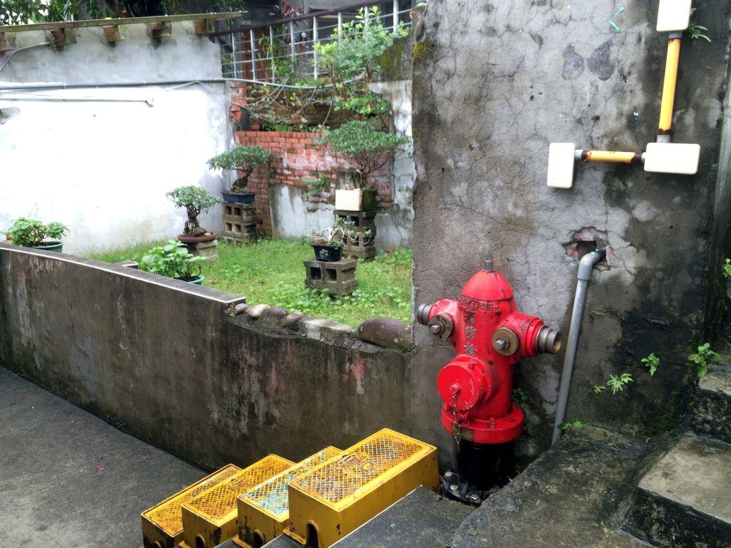 消火栓とラックと盆栽