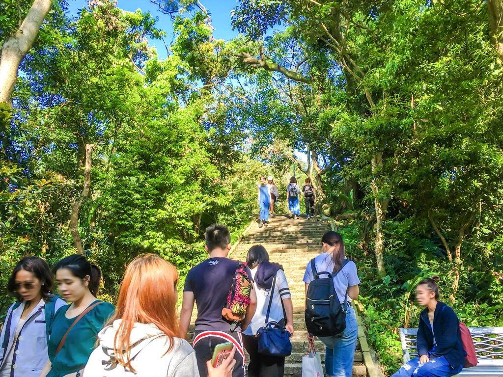 象山の登山道