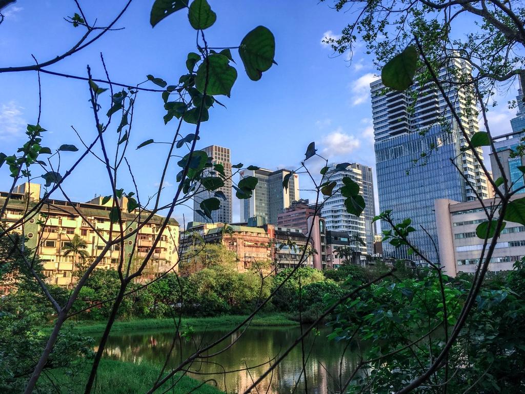 松山文創園区にある池