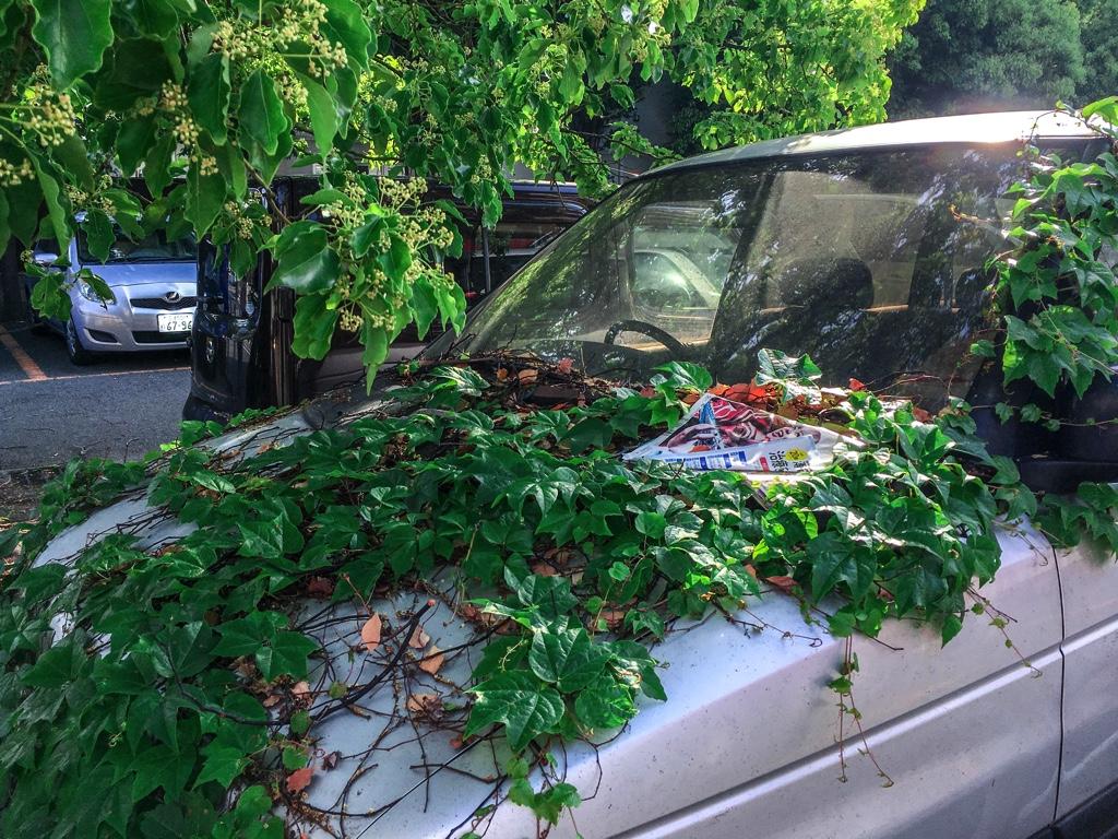 駐車場に放置された自動車