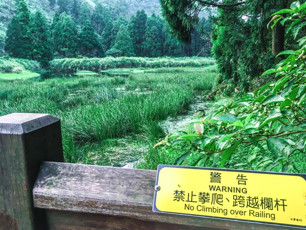 蛙の声が鳴り響く夢幻湖