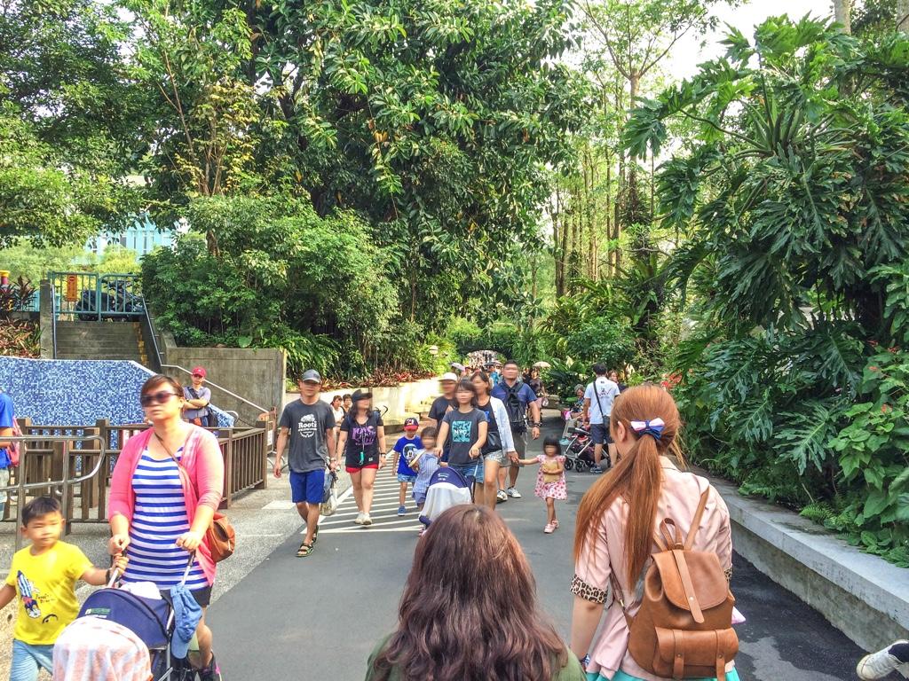 台北市立動物園内を歩く人々