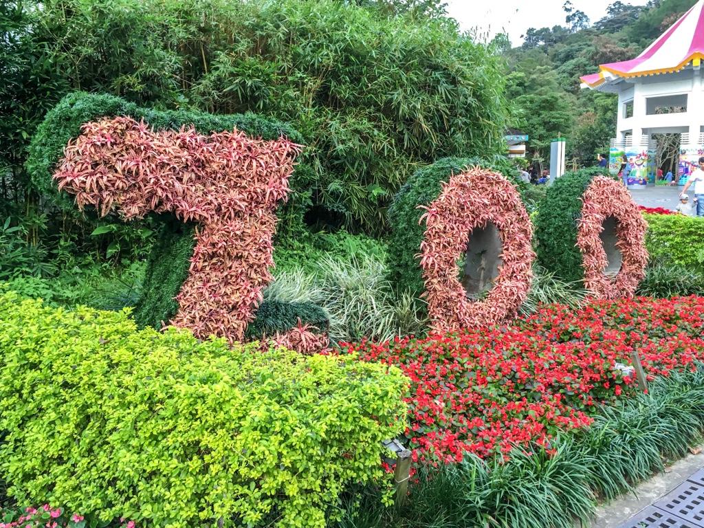 台北市立動物園の花壇