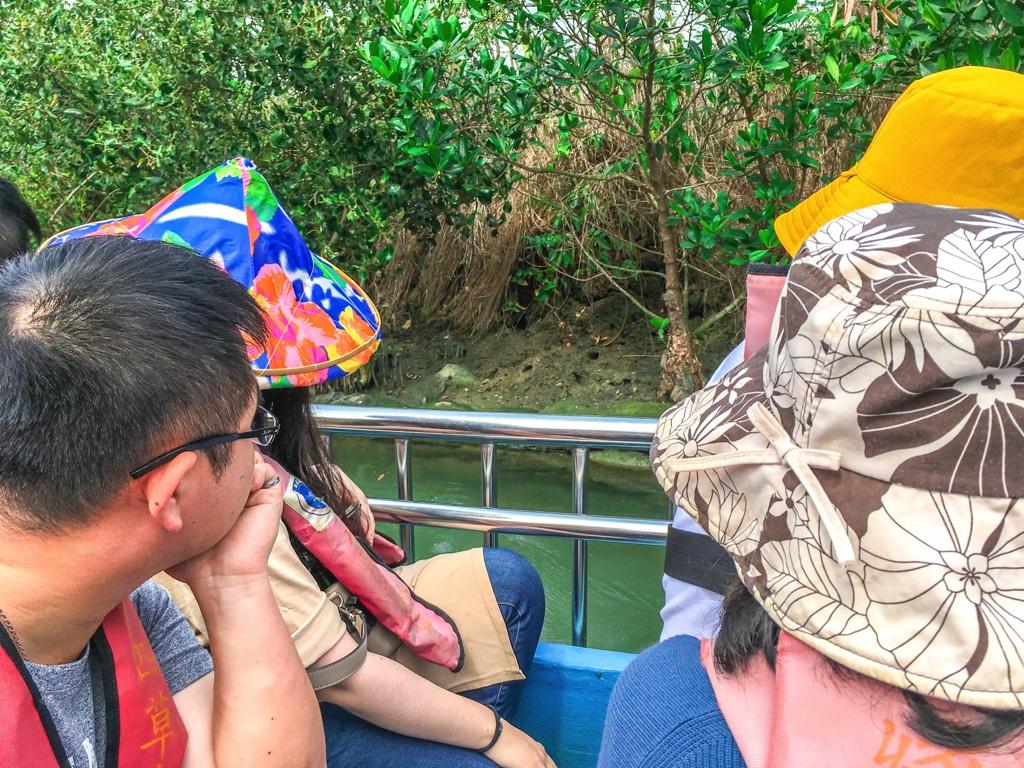 生態系を観察する四草緑色隧道のグルージング参加者