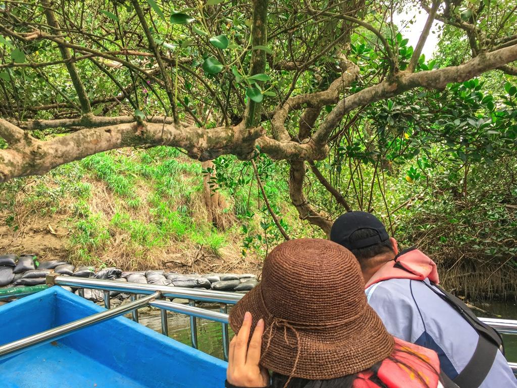 枝を避けるクルージング参加者