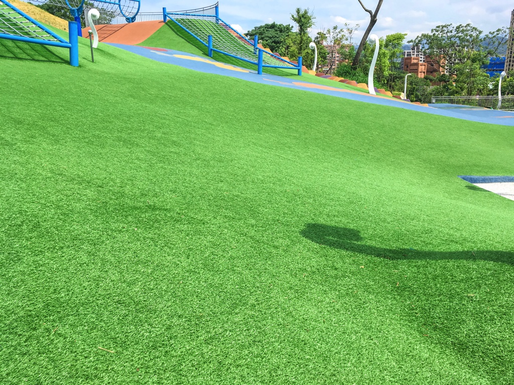 員山公園の芝生