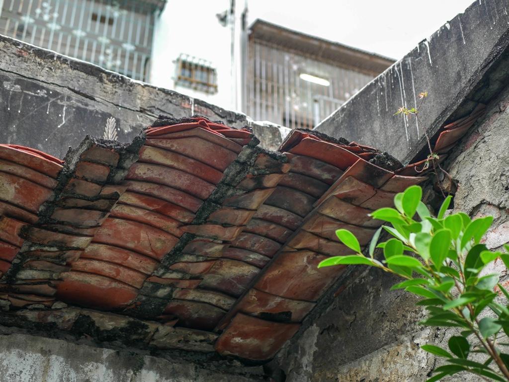 林園安樂樓の屋根