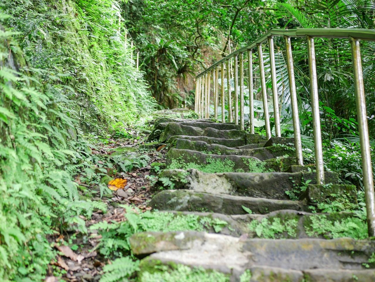 銀河洞越嶺歩道の勾配がきつい階段