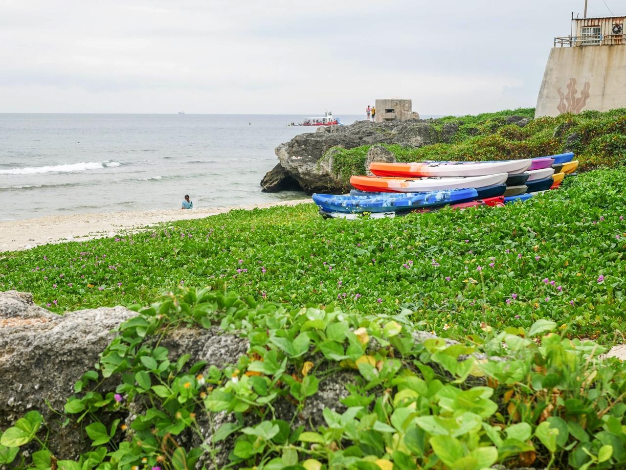 潮間帶生態區